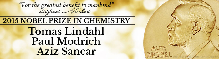 Nobel Prize 2015 in Chemistry goes to 3 scientists for leading studies on new cancer treatments