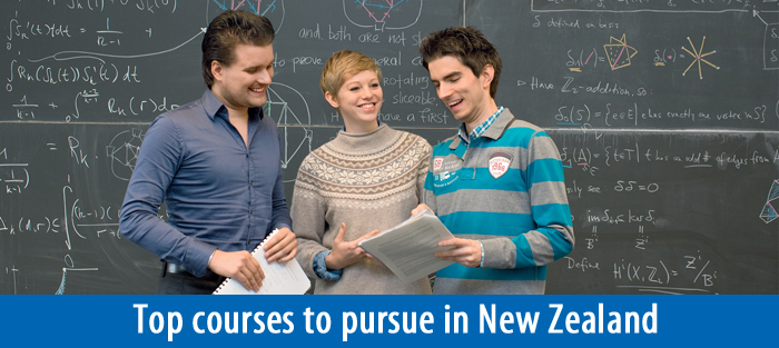 Top courses to study in New Zealand