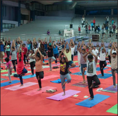 IIT Madras observes International Yoga Day