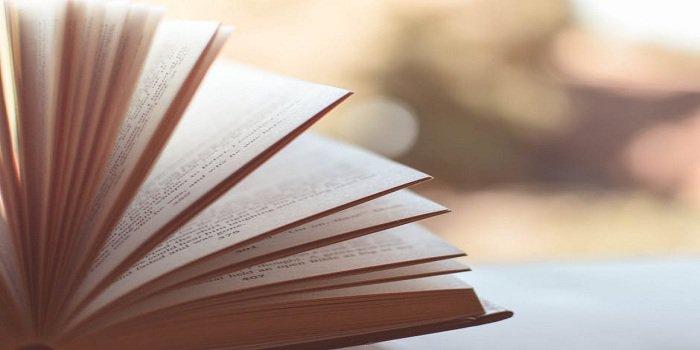 NTSE Sample Papers 2019