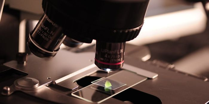 IITs Cutoff for B.Tech Biotechnology