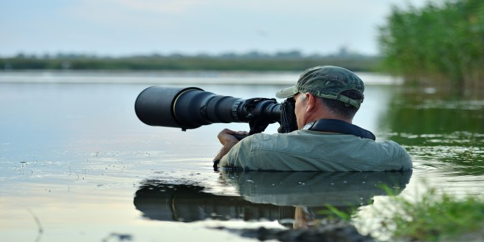 Career as a Wildlife Photographer