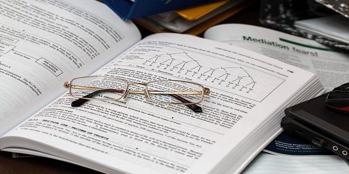 Career as an Economist