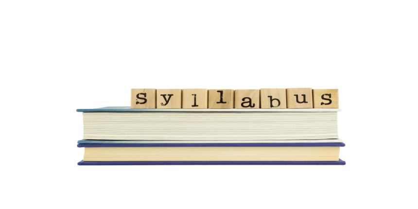 South Asian University Syllabus 2019
