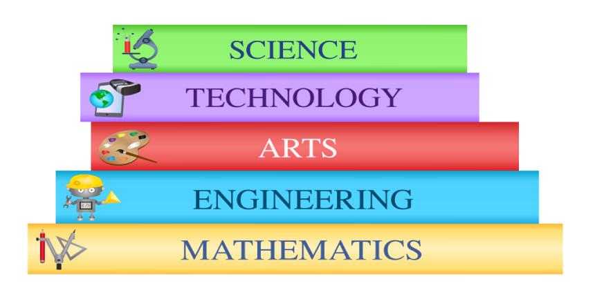 AMU Courses 2019