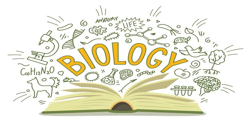 NCERT Book for class 11 Biology