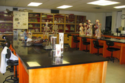 Sanjeevani International School-Biology Lab