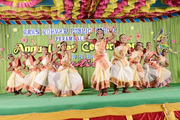 Hans Roever Public School-Annual Day