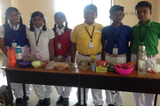 Sri Dharani International School-activity