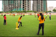 Step By Step School-Cricket