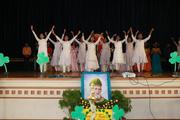 St Patrick S School-Activity