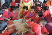 KRISHNA PUBLIC SCHOOL,BILASPUR-activity