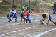 Green Valley High School-Sports Day