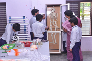 Andulus Public School-Biology Lab