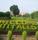 Https://Images.Careers360.Mobi/Sites/Default/Files/B218.Jpg