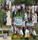 Https://Images.Careers360.Mobi/Sites/Default/Files/Karuna_1.Jpg