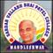 Sardar Vallabh Bhai Patel College, Mandleshwar