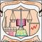 NR Vekaria Institute of Business Management Studies, Junagadh