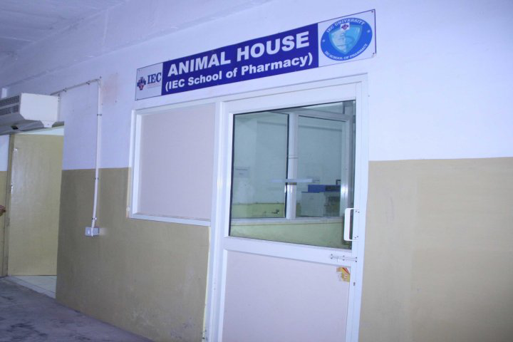 IEC University, Baddi  Animal House of IEC University Baddi