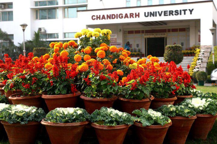 Chandigarh University, Chandigarh  Main Block of Chandigarh University Chandigarh