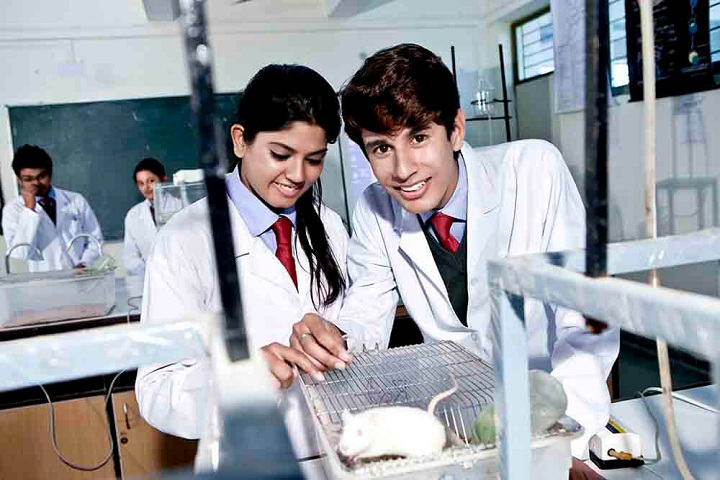 Anand College of Pharmacy, Agra  Anand-College-of-Pharmacy-Agra-lab8