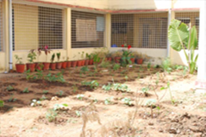 Government First Grade College, Holenarasipura  GFGC3