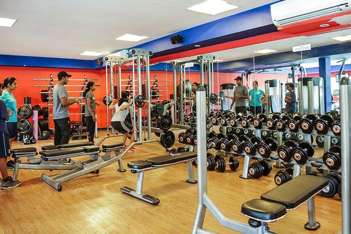The Choice School-Gymnasium