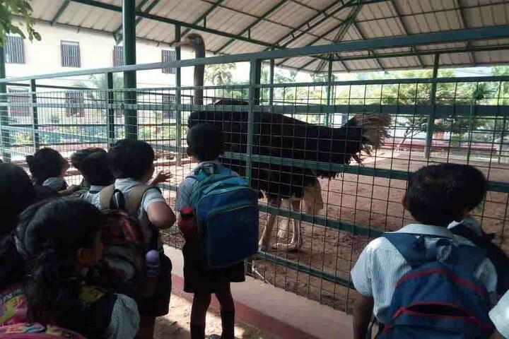 Toch Residential Public School-Excursion