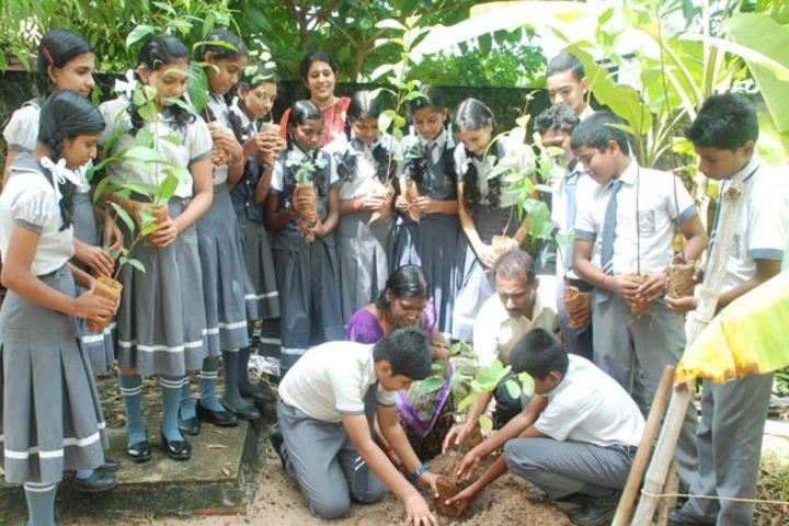 V N S S S N Trusts Central School - Tree Plantation