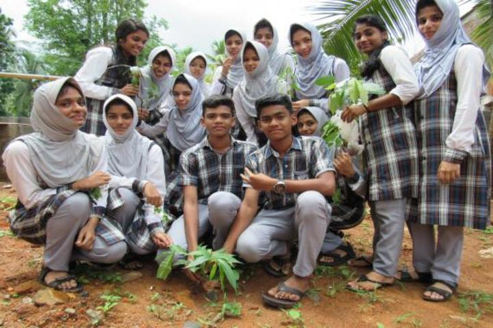 Vadi Husna Public school - Tree plantation