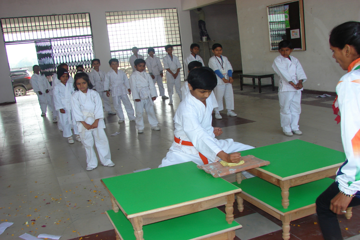Academic Heights Public School-Karate Activity