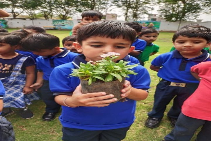 Aim Win Academy-Tree Plantation