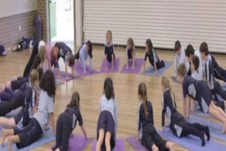 Alok International School-Yoga