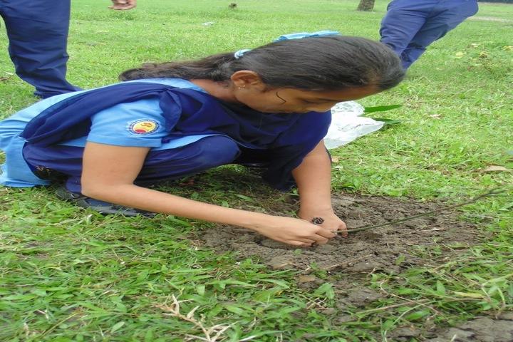 Vivekanand Kendra Vidyalaya- Environment Day