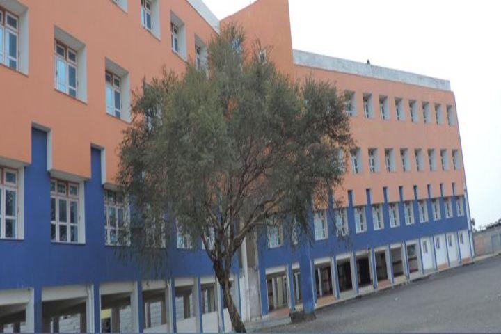 Campion School-Campus View