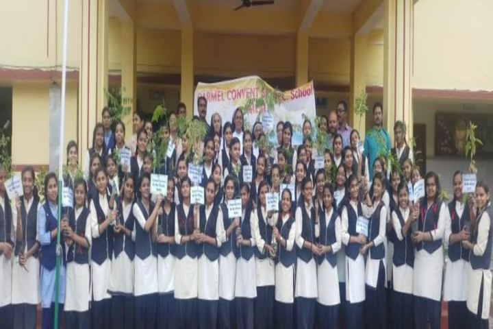 Carmel Convent Higher Secondary School-Environment Day