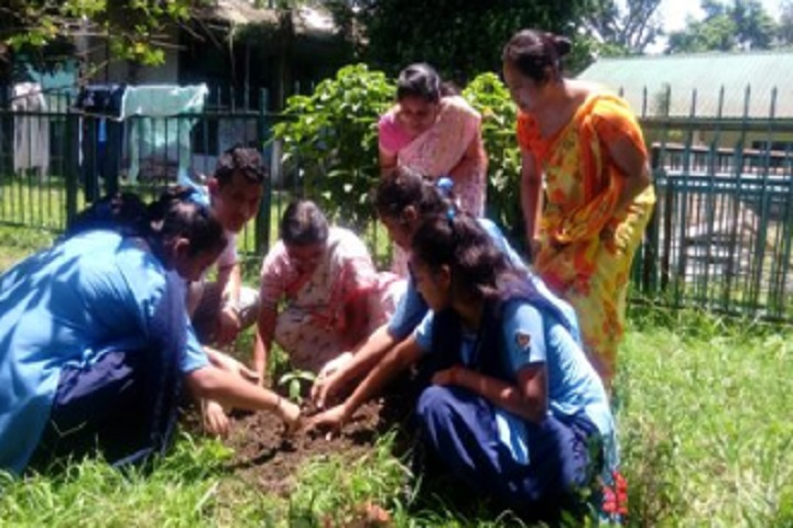 Vivekananda Kendra Vidyalaya Nec-Environment Day Celebrations