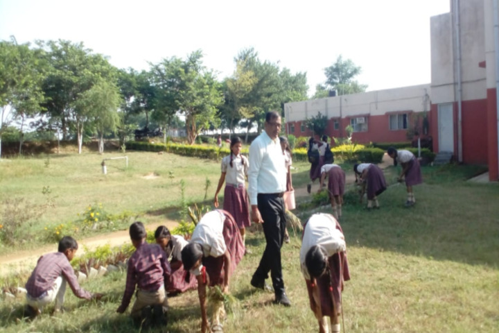 DAV Public School-Activities