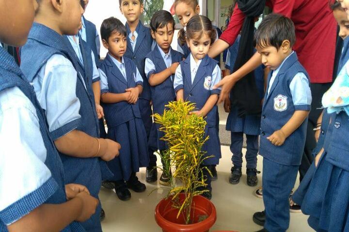 Delhi Public School-Environment Day