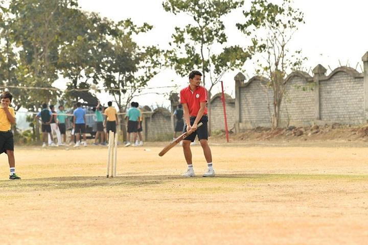 Delhi Public School-Sports Cricket