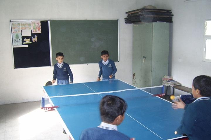 Dhar Public School-Indoor Sports