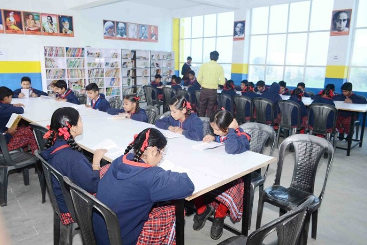 Genius Planet School-Library
