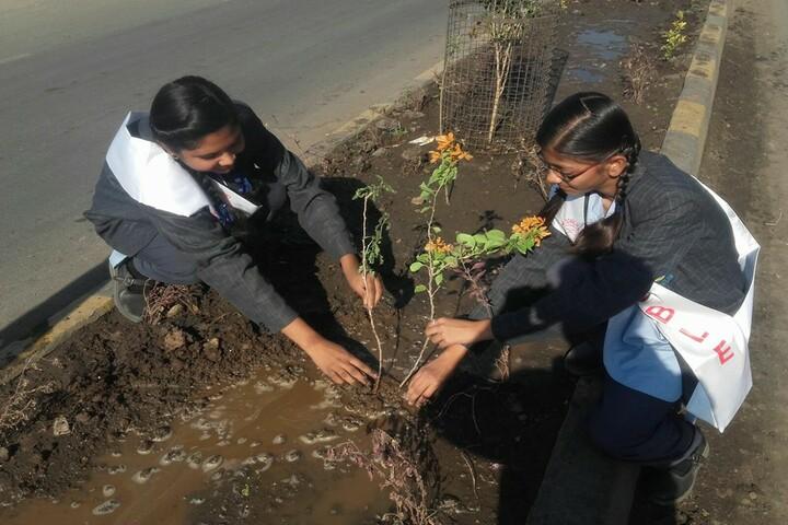 Noble International Academy-Tree-Plantation