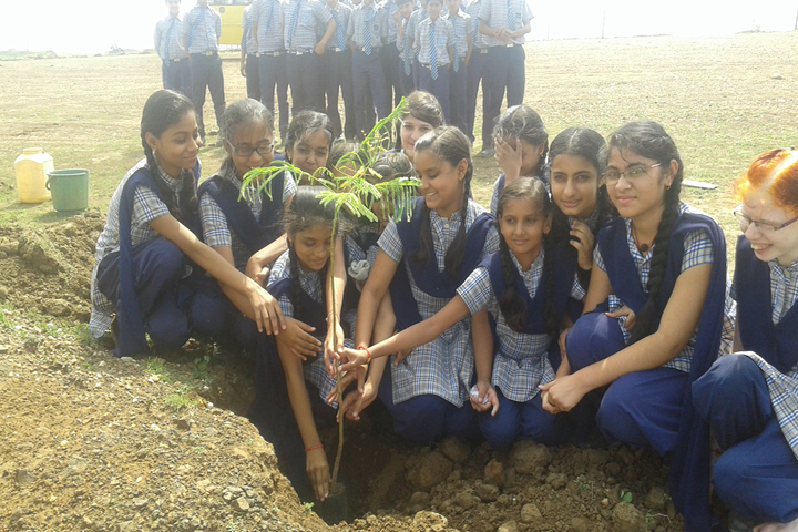 Noble Public School-Tree Plantation
