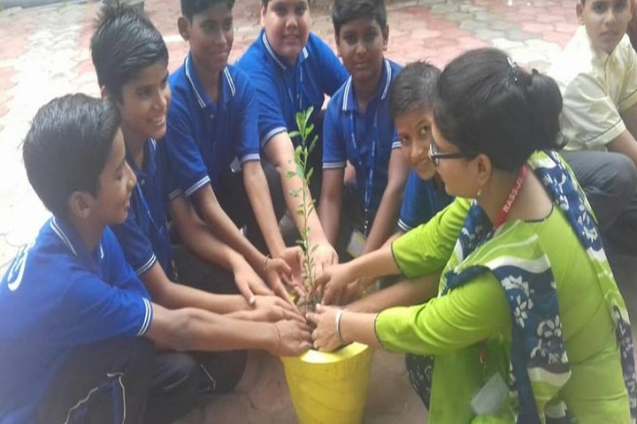 Rass Jb Public School-Tree Plantation