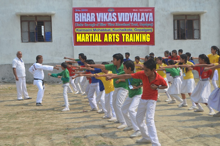 Bihar Vikas Vidyalaya-Karate