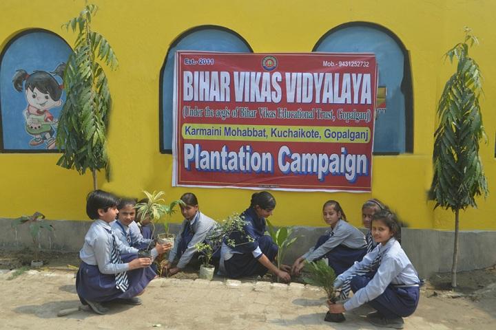Bihar Vikas Vidyalaya-Plantation Trees