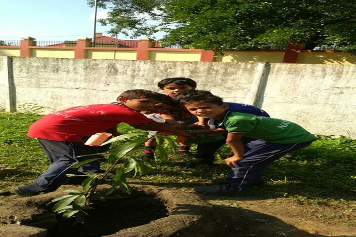 South East Central Railway Mixed Higher Secondary School-Plant A Tree Program