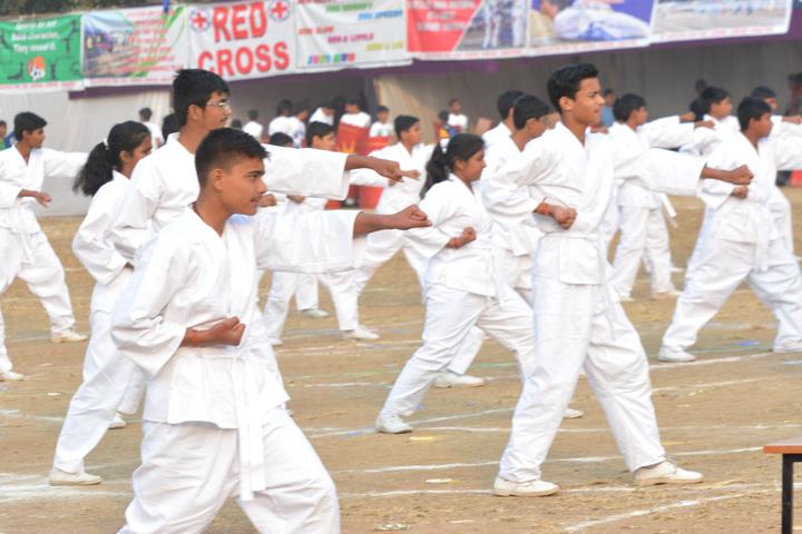 St  Aloysius Senior Secondary School-Karate
