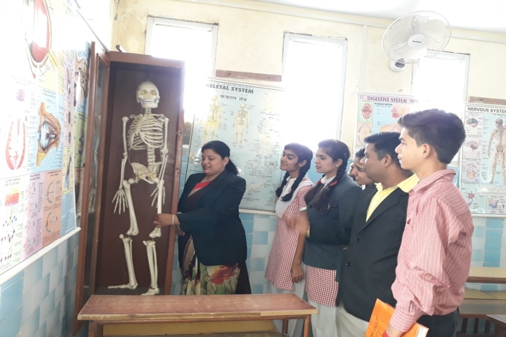 St Annes Higher Secondary School-Biology Lab